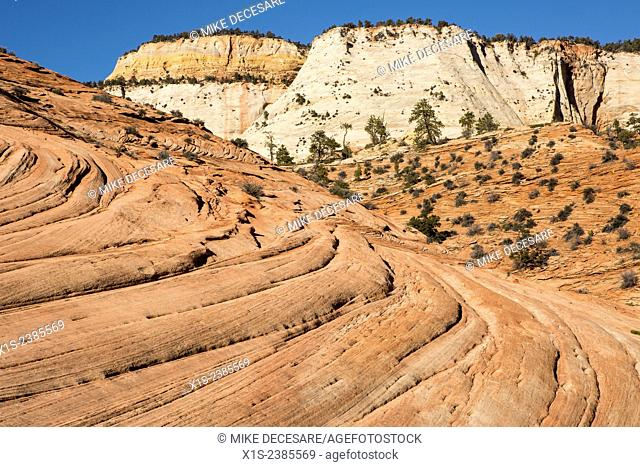 Navajo Sandstone layers seem to flow in the foreground with unique white sandstone cliffs in the background
