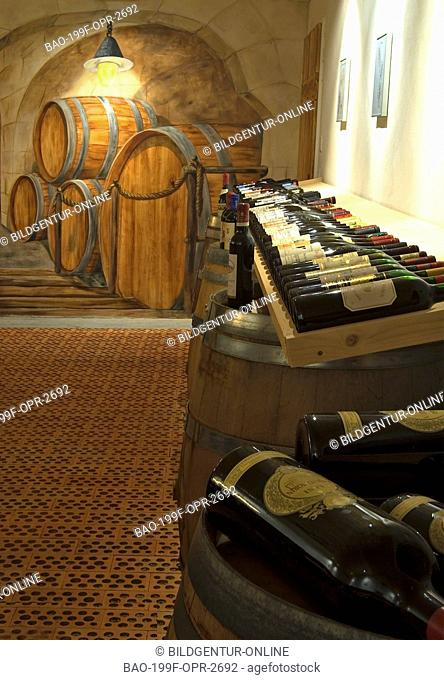 This stock photo shows a exclusive Wine Gallery in a Hotel which is used for wine tasting sessions and storage of exclusive wine varities