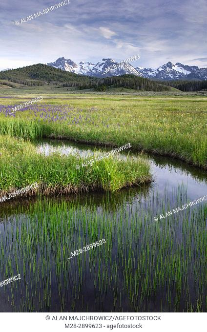 Sawtooth Mountains, Idaho, USA