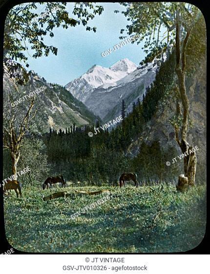 Mountain Scene, Kashmir, India, Hand-Colored Magic Lantern Slide, Newton & Company, 1920
