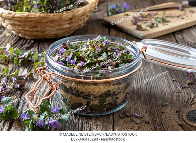 Preparation of ground-ivy herbal syrup against cough in a jar
