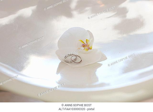 Wedding rings resting on orchid
