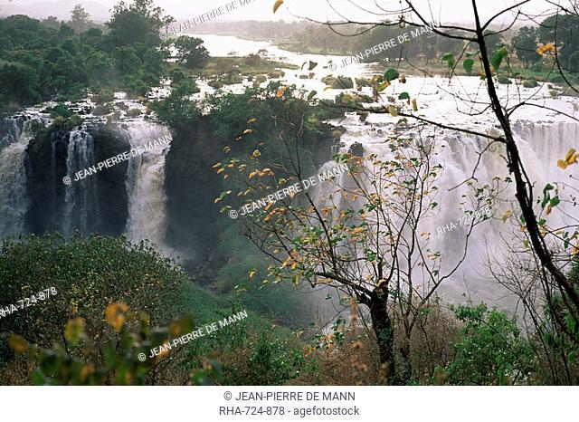Blue Nile falls, Lake Tana area, Gondar region, Ethiopia, Africa