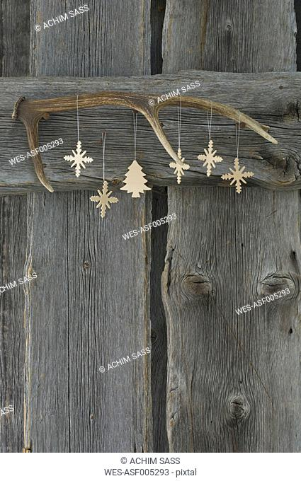 Deer antler and Christmas decoration on wooden wall