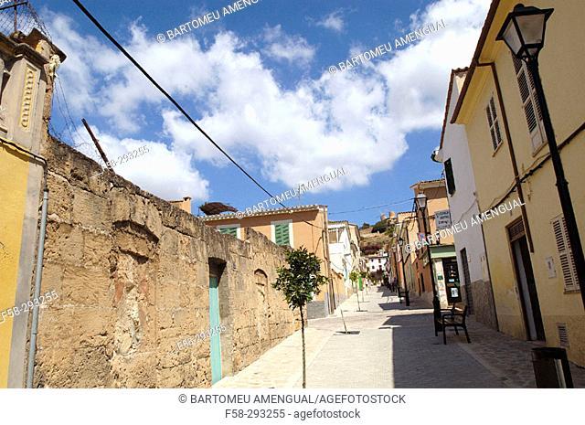 Andraitx. Majorca, Balearic Islands. Spain