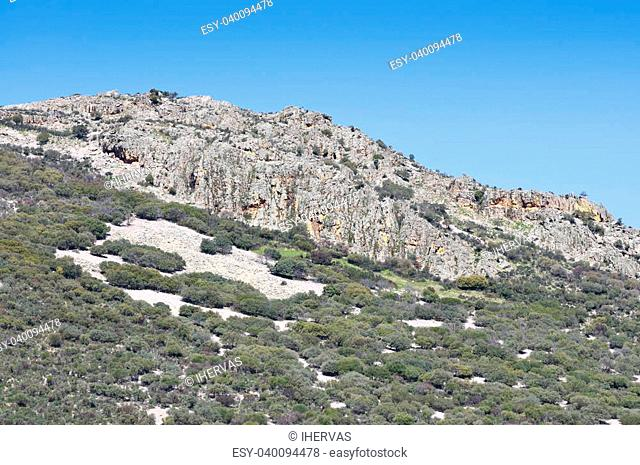 Mediterranean forest over quartzite mountains. Photo taken in Montes de Toledo, Ciudad Real Province, Spain. The Montes de Toledo are located in the central...