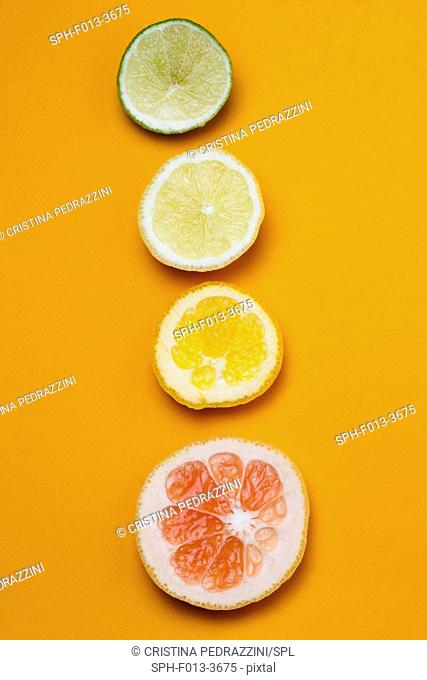 Slices of citrus fruit, still life