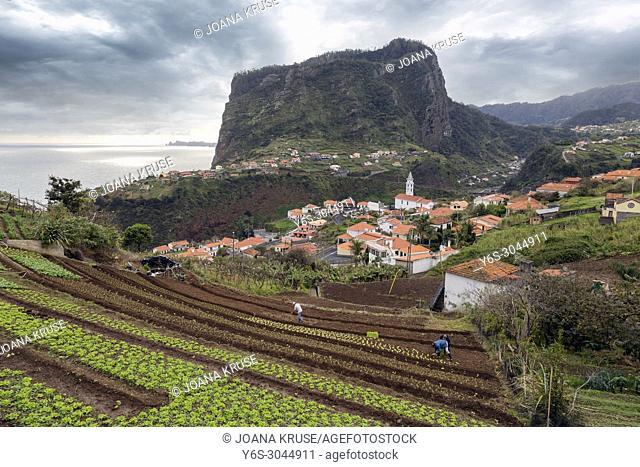 Faial, Madeira, Portugal, Europe