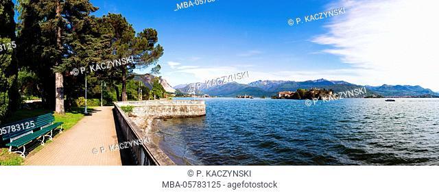 Conifers at the promenade in front of the Isola Bella (Borromean islands) at the Lago Maggiore, Stresa, Piedmont, Italy