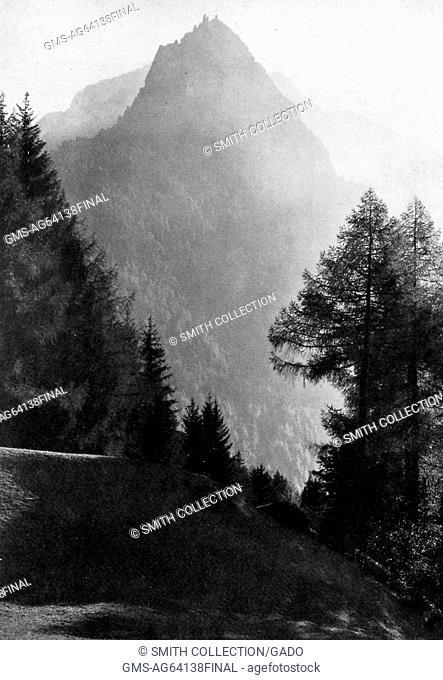 Wooded slopes of the Val Bregalia, Switzerland, 1922