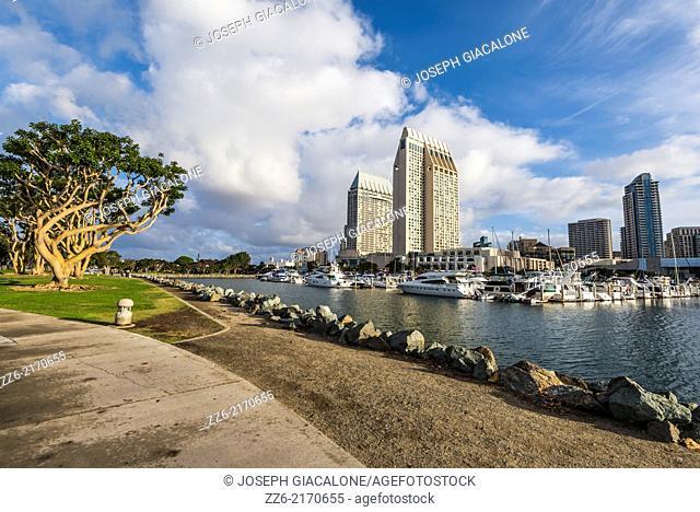 Embarcadero Marina and downtown buildings. San Diego, California, United States