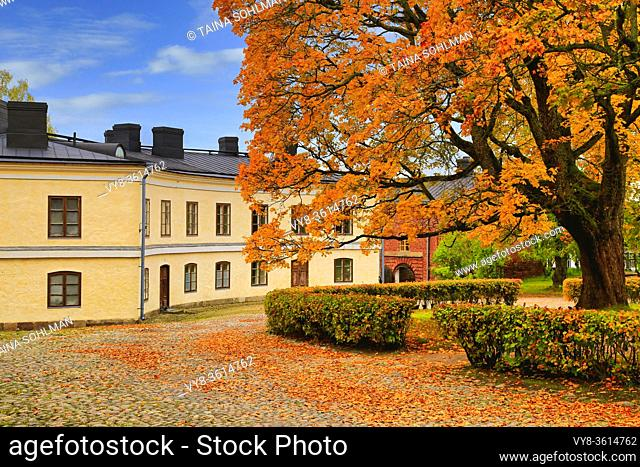 Old buildings and yellow, big maple tree in Suomenlinna, Finland