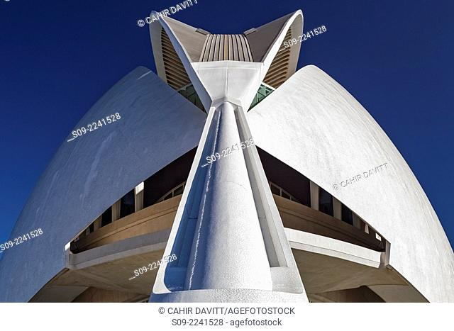 Detail view of the El Palau de les Arts Reina Sofia (Opera House), located in the City of Arts and Sciences, designed by the Architect Santiago Calatrava Valls...