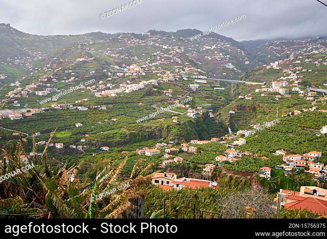View of Miradouro da Torre viewpoint of the atlantic coastline with banana trees in Câmara de Lobos, Madeira
