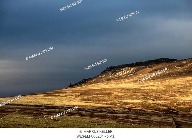 United Kingdom, Scotland, View of Cairngorms National Park