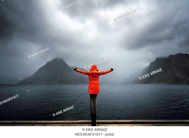 Norway, Lofoten, rear view of man balancing on a pole at the coast
