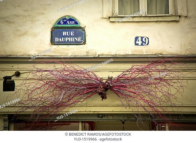 Store decoration made from painted twigs above shop in Rue Dauphine, Paris, France