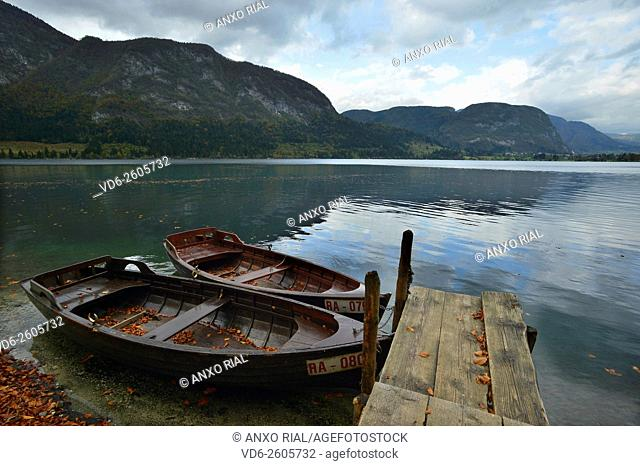 Slovenia. Julian Alps. Triglav National Park. Bohinj lake