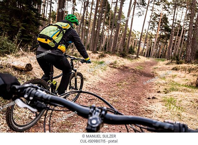 Woman mountain biking, Jenesien, South Tyrol, Italy