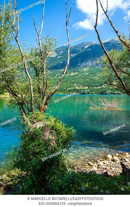 panorama and aquatic landscape of Lake Barrea, in the Abruzzo National Park, Italy, Europe