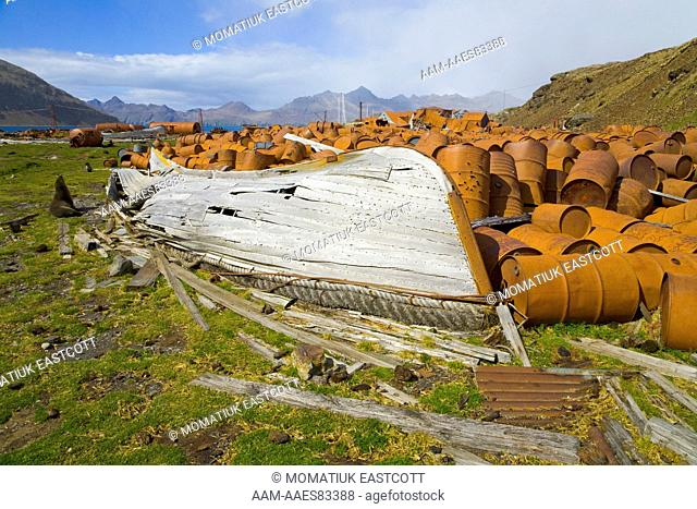 Old boat, fur seal and rusty barrels in old abandoned whaling station full of broken machinery, collapsing buildings, barrels, pipes and tanks, Leigh Harbour