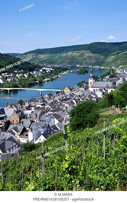 View over Zell village at Moselle river, Rhineland-Palatinate, Germany, Europe / Blick auf Zell an der Mosel mit der Pfarrkirche Sankt Peter und Paul
