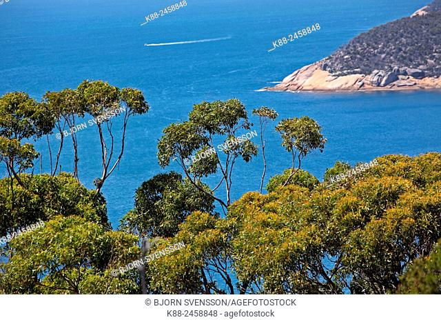 Wilsons Promontory in Victoria, on the southern tip of mainland Australia