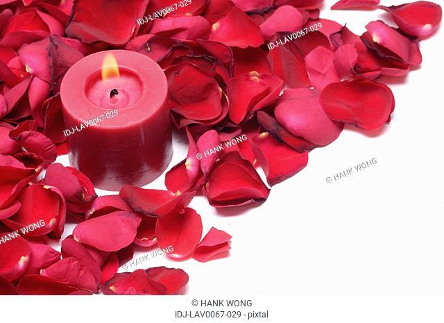 Candle lit up near rose petals