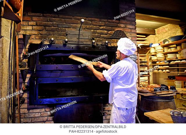 Master baker Alexander Mikat puts Streuselkuchen (crumb cake) in a wood-fired oven in the organic bakery of the Schmilka Mill in the Schmilka district of Bad...