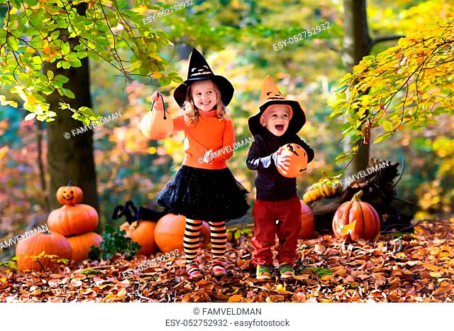 Children wearing black and orange witch costumes with hats playing with pumpkin and spider in autumn Park on Halloween. Kids trick or treat