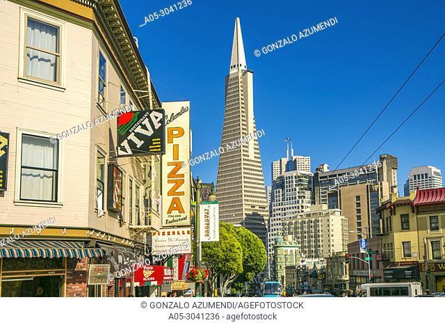 Transamerica Pyramid. Little Italy. North Beach neighborhood. San Francisco. California. USA