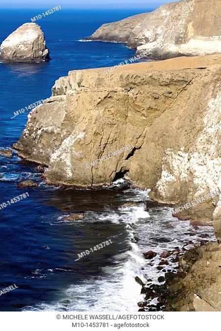 Elephant Seal cove area with Shag Rock