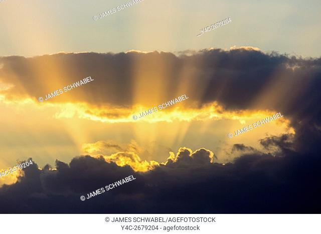 Dramatic gold sunset sky with god rays over the Gulf of Mexico from Caspersen Beach in Venice Florida