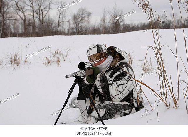 Varmint Hunter With Rifle On Bipod on Prairies