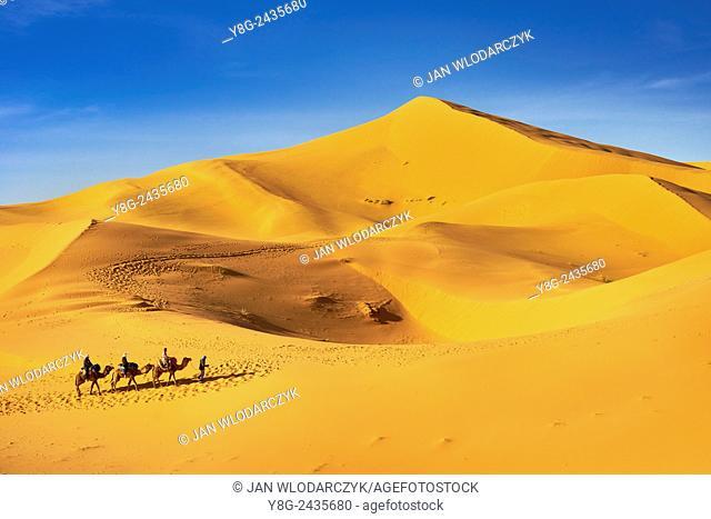 Tourists ride on camels, Erg Chebbi desert near Merzouga, Sahara, Morocco