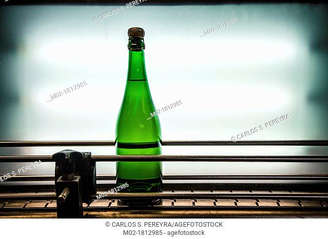 Wine and Cava bottling line  Winemaking in the largest wine region of Catalonia, the Penedes  Barcelona, Spain