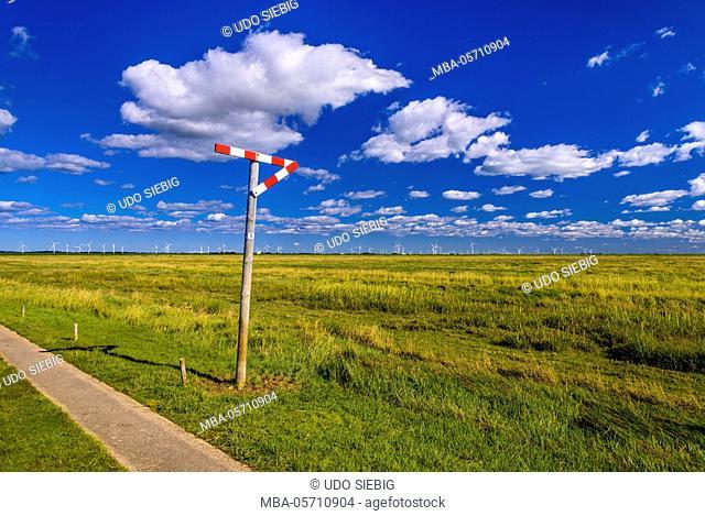 Germany, Schleswig-Holstein, North Frisia, Reußenköge, Hamburger Hallig, salt meadow, passing place