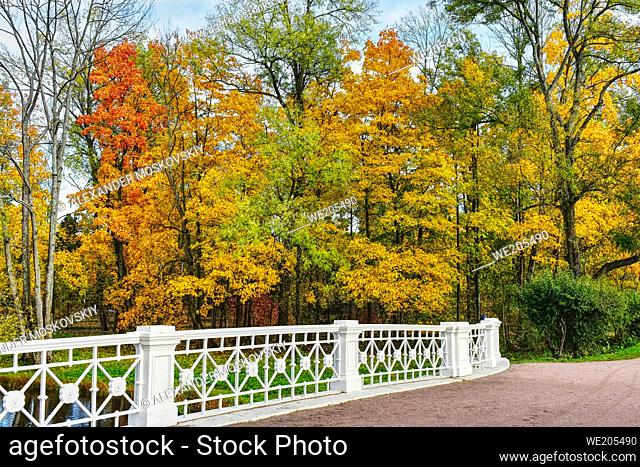Beautiful and tranquil Autumn landscape with bridge
