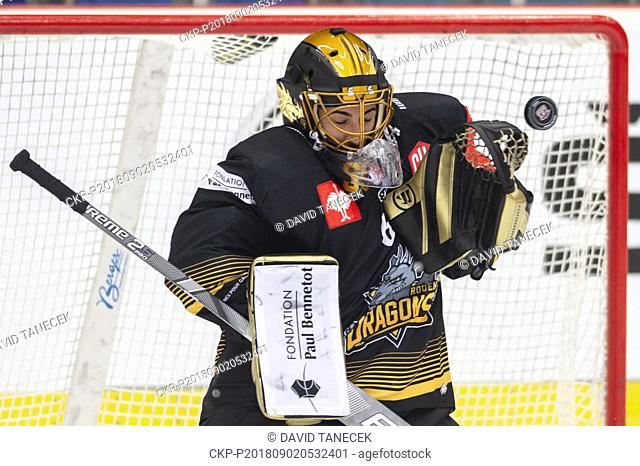 Hockey player, goalie MATIJA PINTARIC of Rouen in action during the Ice hockey Champions League matches group F Mountfield Hradec Kralove vs