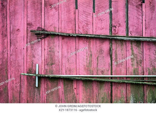 Rustic fishermans shack, Menemsha, Chilmark, Martha's Vineyard, Massachusetts, USA