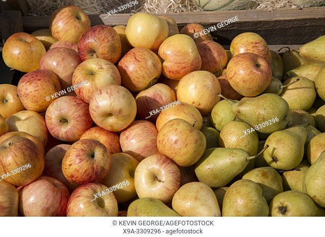 Apples and Pears for Sale on Market Stall