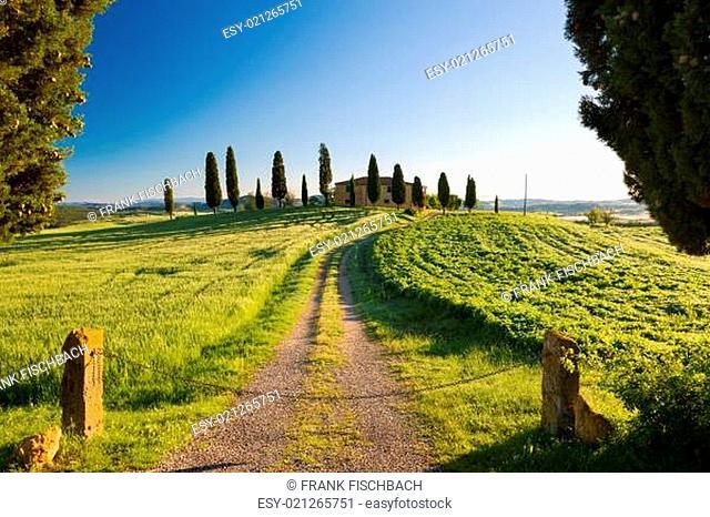Farmhouse with cypress and blue skies, Pienza, Tuscany, Italy