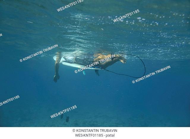 Maledives, Indian Ocean, surfer lying on surfboard, underwater shot