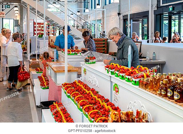 FRESH STRAWBERRIES, REGIONALLY-GROWN FRUIT, THE NEW BIG MARKET, BOULEVARD WILFRID HAMEL, QUEBEC, CANADA