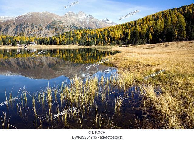 Lake of Staz, Switzerland, Graubuenden, St. Moritz