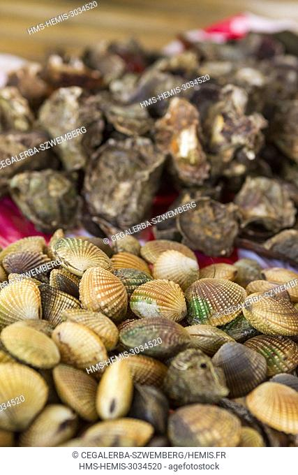 Philippines, Palawan, Aborlan, shells in the traditional market