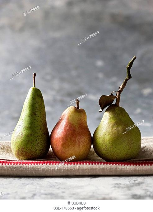 Wiliams pear, Conférence pear and Comice pear