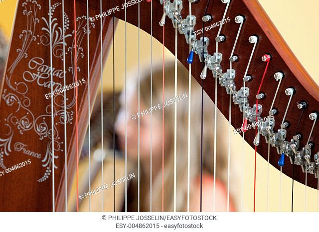 Brittany, Cotes d'armor, strings lined up in a row and tightly stretched on a harp