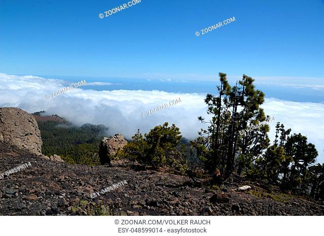 pico nambroque, nambroque, vulkanroute, Routa de Los Volcanes, La Palma, cumbre vieja, kanaren, kanarische inseln, spanien, landschaft, berg, berge, vulkanroute