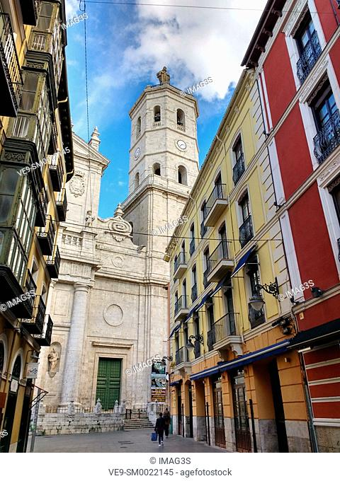 Valladolid Cathedral, Castile and Leon, Spain